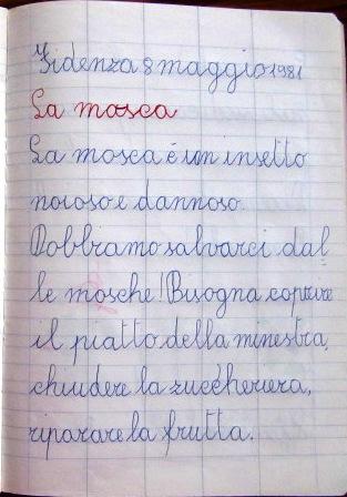 La mosca - pensierino prima elementare di Susanna Albini